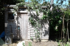 Shed-with-old-Roses